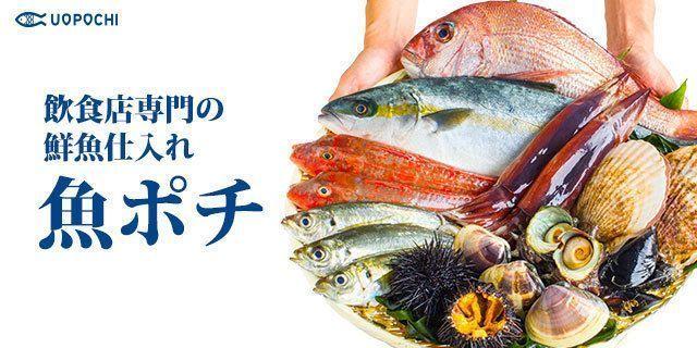 【東京・神奈川・千葉・埼玉】魚ポチ