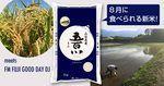 水田環境「特A」 こぴっと 特別栽培米 山梨県産 五百川