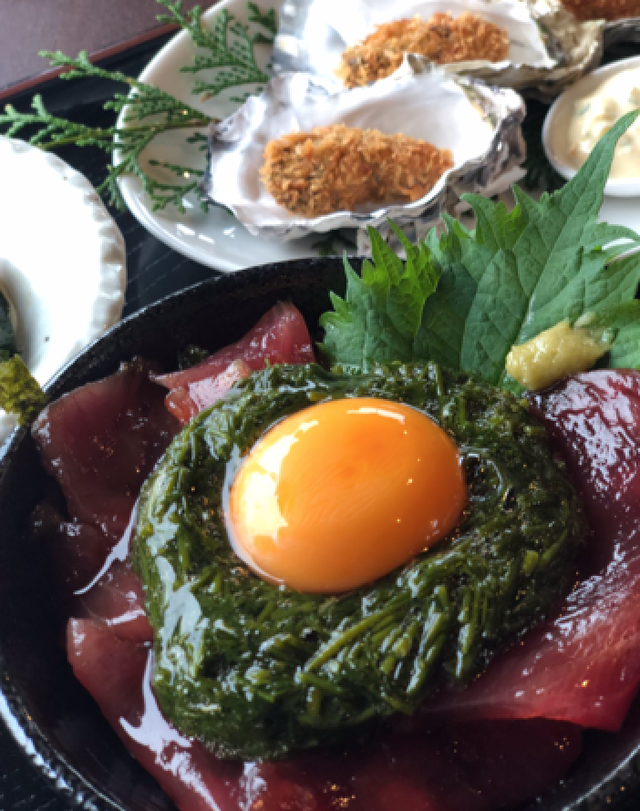 伊勢志摩の海藻 アカモク