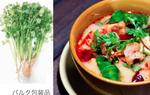 【関東限定】パクチー(香菜)